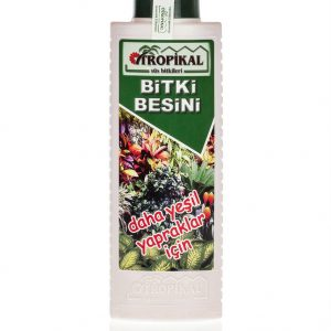 yeşil yapraklı bitkiler için